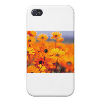 BRANDED iPhone 4/4S CASES