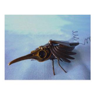 Brass Borer Beetle Postcard