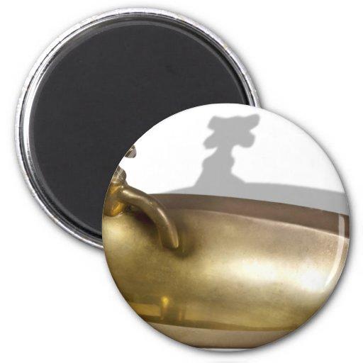 BrassSink092110 Magnet
