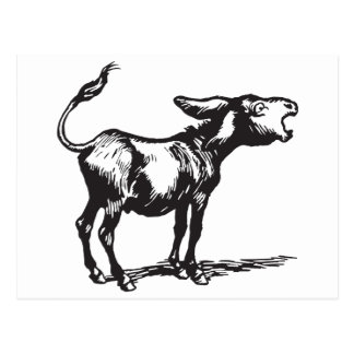 braying donkey postcard