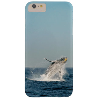 breaching humpback whale barely there iPhone 6 plus case