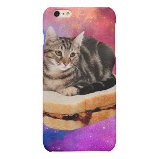 bread cat  - space cat - cats in space