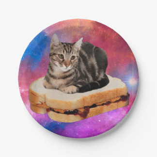 bread cat  - space cat - cats in space 7 inch paper plate