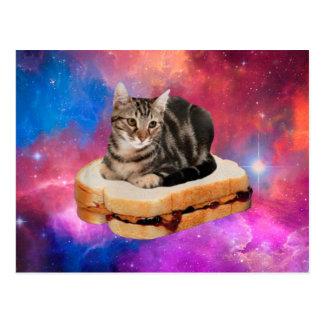 bread cat  - space cat - cats in space postcard
