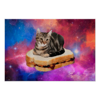bread cat  - space cat - cats in space poster