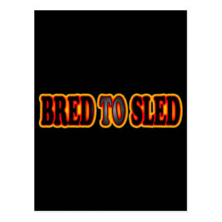 Bread To Sled Postcard