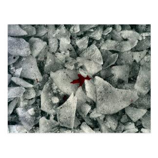Break The Ice Postcard