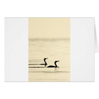 Breakfast Time for Two Cormorants Card