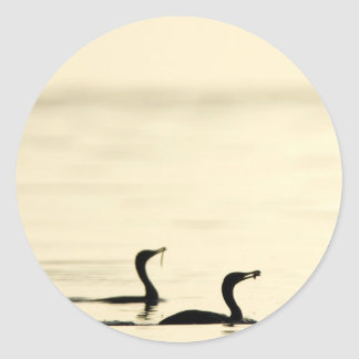 Breakfast Time for Two Cormorants Classic Round Sticker