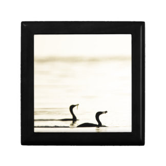 Breakfast Time for Two Cormorants Gift Box