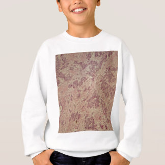 Breast cancer under the microscope sweatshirt