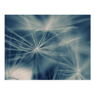 Breath flower postcard