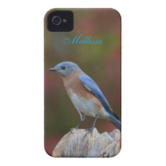 Breathtaking Bluebird iPhone 4 Case-Mate Cases