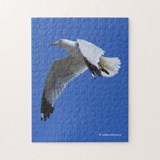 Breathtaking Ring-Billed Gull in Flight Jigsaw Puzzle
