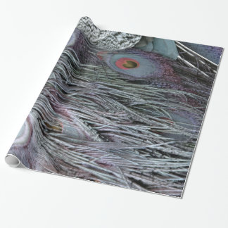 breezy peacock feathers wrapping paper