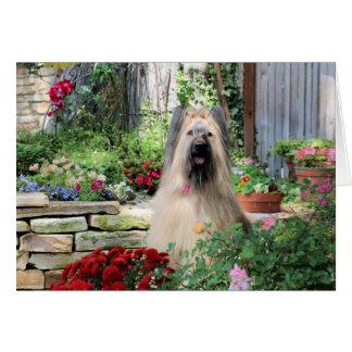 Briard Dog in Flower Garden Card