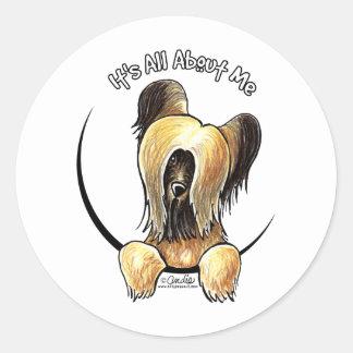 Briard IAAM Round Sticker
