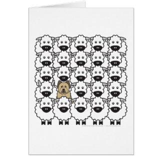 Briard in the Sheep Card