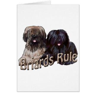 briards rule card