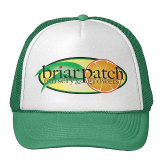 BriarPatch Hat