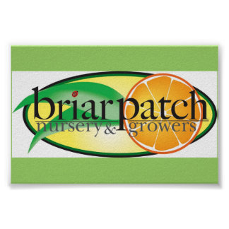 BriarPatch LogoArt Poster