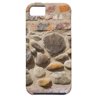 Brick and stone wall tough iPhone 5 case
