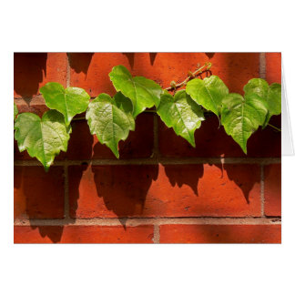 Brick Ivy Card