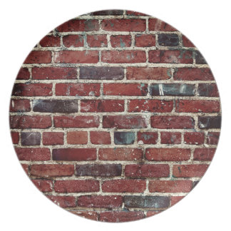 Brick Wall Cool Texture Dinner Plate