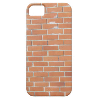 brick wall (red) iPhone 5 cases