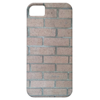 Brickwork phone case for the iPhone 5
