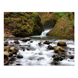 Bridal Veil Falls Oregon Waterfall Postcard