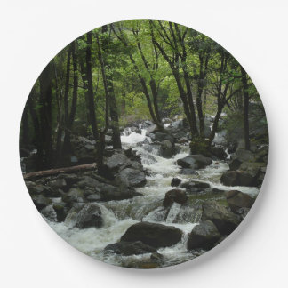 Bridalveil Creek in Yosemite National Park Paper Plate
