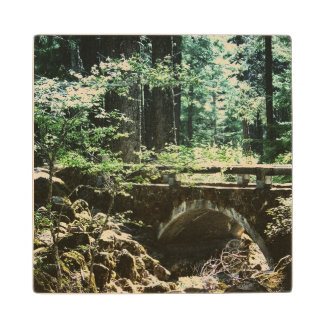 Bridge in Nature Wood Coaster