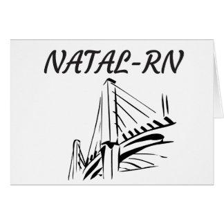 bridge-nilton-navarro pdf