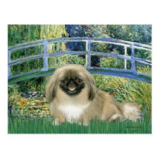 Bridge - Pekingese 1b Postcard