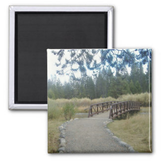 Bridge Photo Magnet