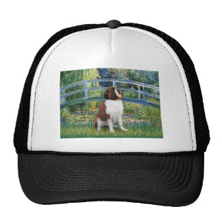 Bridge - Saint Bernard Hats