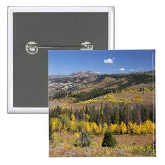 Bridger-Teton National Forest Pinback Buttons