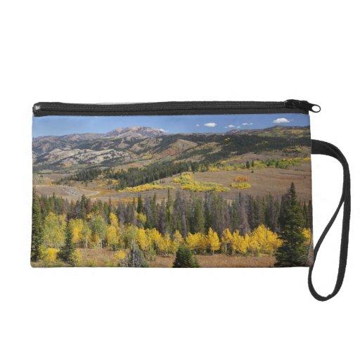 Bridger-Teton National Forest Wristlets