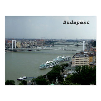 Bridges over the Danube Postcard