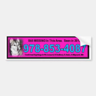 bridgett bumper sticker pink
