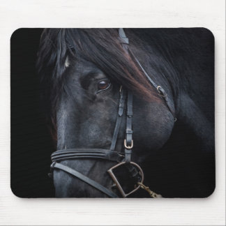 Bridled Black Stallion Face Mousepad