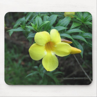 Bright and cheery mouse pad