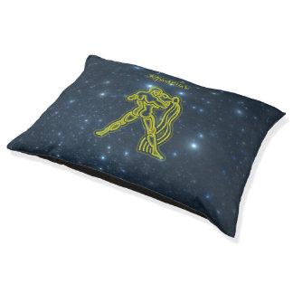 Bright Aquarius Pet Bed