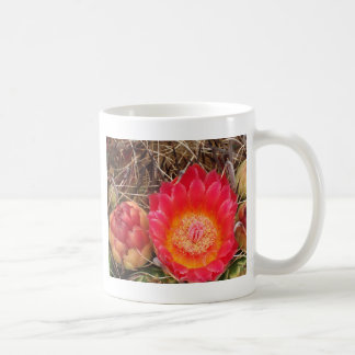 Bright barrel cactus bloom coffee mug
