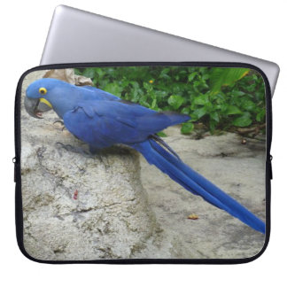Bright Blue Parrot Computer Sleeves