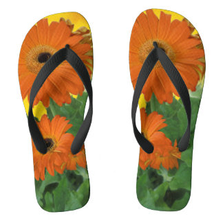 Bright, Bold Gerbera Daisies Flip Flops Thongs