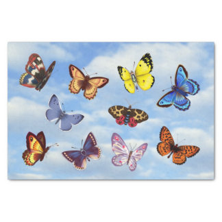 Bright Butterfly Tissue Paper