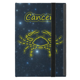 Bright Cancer iPad Mini Cases
