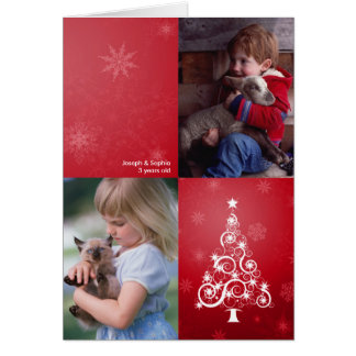 Bright Christmas Folded Photo Card